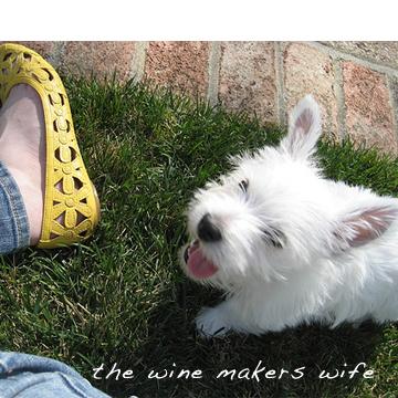 http://winemakerswife.typepad.com/.a/6a00e55349f6f4883301053682849c970c-pi